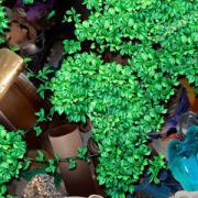 Los plásticos biodegradables impulsan el reciclado orgánico y mejoran el mecánico