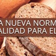 Todo lo que debes saber sobre la nueva ley del pan