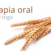 La inmunoterapia oral, eficaz ante la alergia al trigo